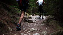 la-meilleure-chaussure-trail