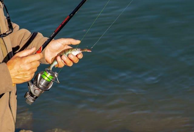 bobine-de-fil-de-pêche