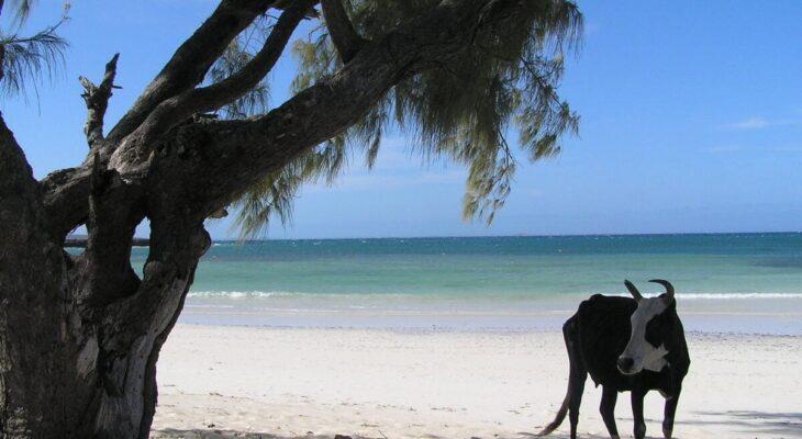 plage-de-Ramena