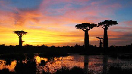 plus-beaux-parcs-a-Madagascar